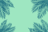 Fototapety Beautifil Palm Tree Leaf  Silhouette Background Vector Illustration