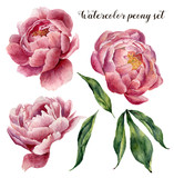 Fototapety Watercolor peony set. Vintage floral elements with peony flowers and leaves isolated on white background. Hand drawn botanical illustration for design