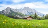 Traditional austrian alpine cabin, Salzburger Land, Austria - 140052000