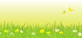 Frühlingswiese - Gelb