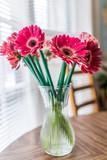 Closeup of pink gerbera flower bouquet in vase
