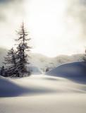 luci e nebbie invernali