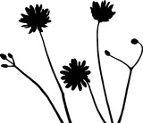 Wildflowers silhouette vector illustration in black and white