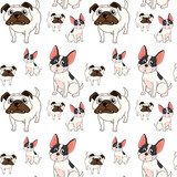 Seamless background design with pug dogs
