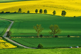 Spring landscape of South Moravia, Moravia, South Moravia, Czech republic
