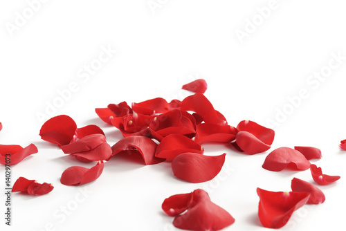 Foto Murales red rose petals on white background, abstract photo