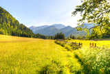 Path to nature view in Ferlach, Austria