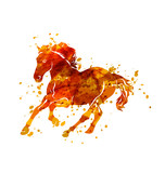 Vector illustration of  running horse