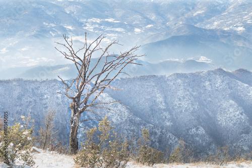 winter mountains landscape. Serbia, Kopaonik. Poster