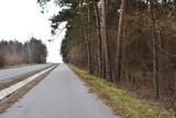 droga asfaltowa wzdłuż lasu