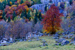colori in Val di Mello