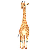 watercolor baby giraffe - 140589478