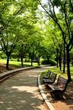 ソウル・ヨイド公園