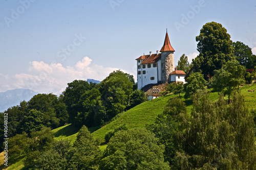 Secluded country chateau overlooking Lake Lucerne. Poster