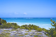 the Caribbean Sea and white wave beach under blue sky in Tulum, Yucatan Peninsula, Mexico, green grasses foreground, text space copy space