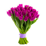 violet tulips isolated on white - 140664200