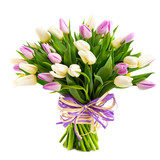 bouquet of tulips isolated on white - 140664410