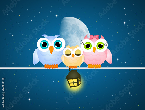 cute owls on wire