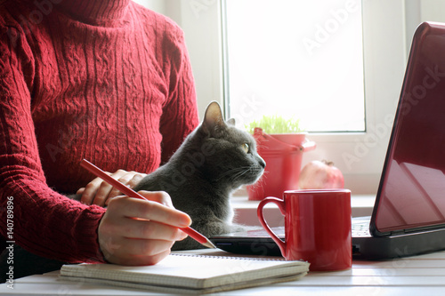 spending time together in a favorite setting/ Girl in red, working at the computer with a cat