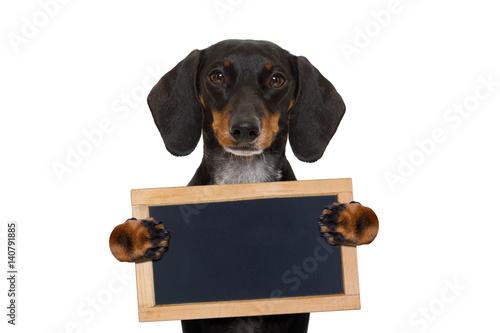 Deurstickers Franse bulldog dachshund sausage dog banner