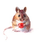 Fototapety Watercolor Mouse Holding a Berry Wild Animal Rodent Hand Drawn Illustration isolated on white background