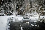 Spring of the Bosna river, park Vrelo Bosne near Sarajevo - Bosnia and Herzegovina, winter scene