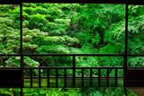 新緑の京都 瑠璃光院