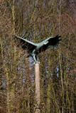 Ein Adler aus Metall