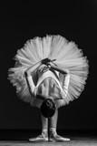 Young beautiful ballerina posing in studio - 141057412
