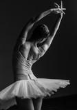 Young beautiful ballerina posing in studio - 141057456