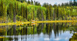 Alaska wilderness lake with two float planes on lake