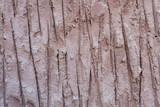 Wall concrete texture.