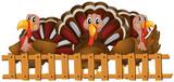 Three turkeys behind the fence