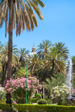 public garden Villa Bonanno in Palermo city