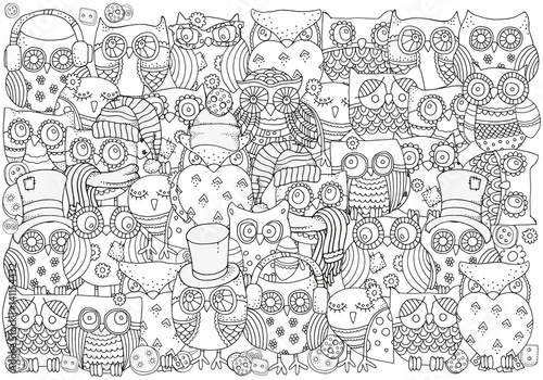 Adult coloring book. Owls.