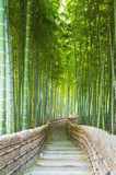 Bamboo Groves, bamboo forest in Arashiyama, Kyoto Japan. © Andrea