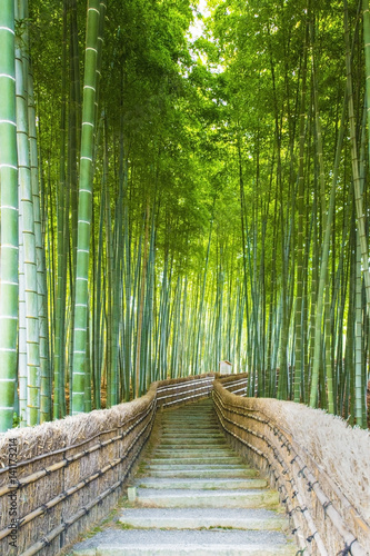 Fototapeta Bamboo Groves, bamboo forest in Arashiyama, Kyoto Japan.
