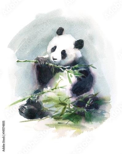 akwarela-panda-jedzenie-ilustracja-zwierzat-bambusa