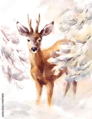 Watercolor Deer Hand Painted Winter Scene Illustration  - 141174895