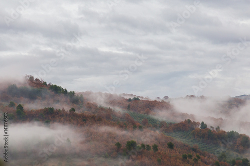 Red and green trees between a sea of fog in a typical autumn scenery - 141176602