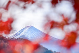 Blurred Red maple leaves with Mt Fuji background