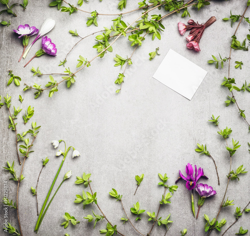 Springtime nature frame with spring twigs and flowers and blank white paper card, top view