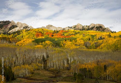 Fototapeta Autumn at Kebler Pass in Colorado