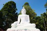 big white buddha statue on the hill
