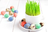 Easter eggs with grass served on the plate , copy space