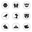 Постер, плакат: Set Of 9 Editable Zoology Icons Includes Symbols Such As Sheep Catbird Sow And More Can Be Used For Web Mobile UI And Infographic Design
