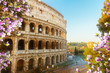 close up view of Colosseum building in Rome at spring day, Italy
