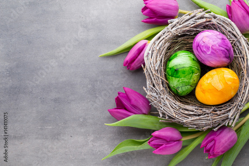 Spring greeting card. Easter eggs in the nest. Spring flowers tulips.