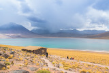 Beauty lake and volcanoes on Altiplano, Bolivia