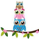 two owls with baby on a branch